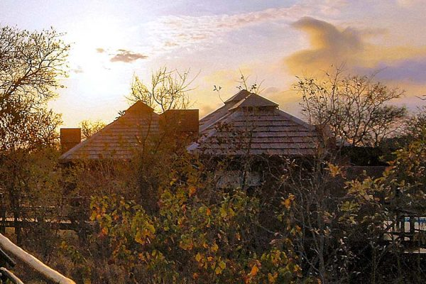 idube-lodge-royal-african-discoveries-5