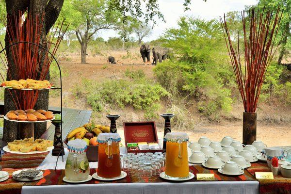 imbali-safari-lodge-royal-african-discoveries-2