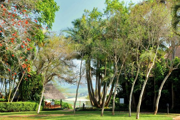 protea-hotel-hazyview-royal-african-discoveries-7