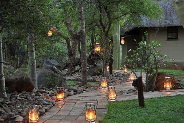 thornybush-waterside-game-reserve-royal-african-discoveries-2