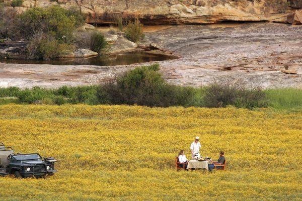 bushmanskloof-royal-african-discoveries-7